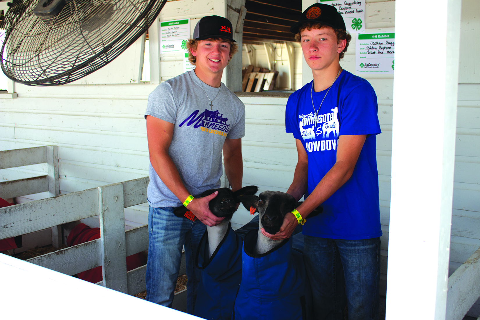 Jackson (left) and Lane (right) Guggisberg of the Golden Gophers 4-H Club pictured with their sheep.
