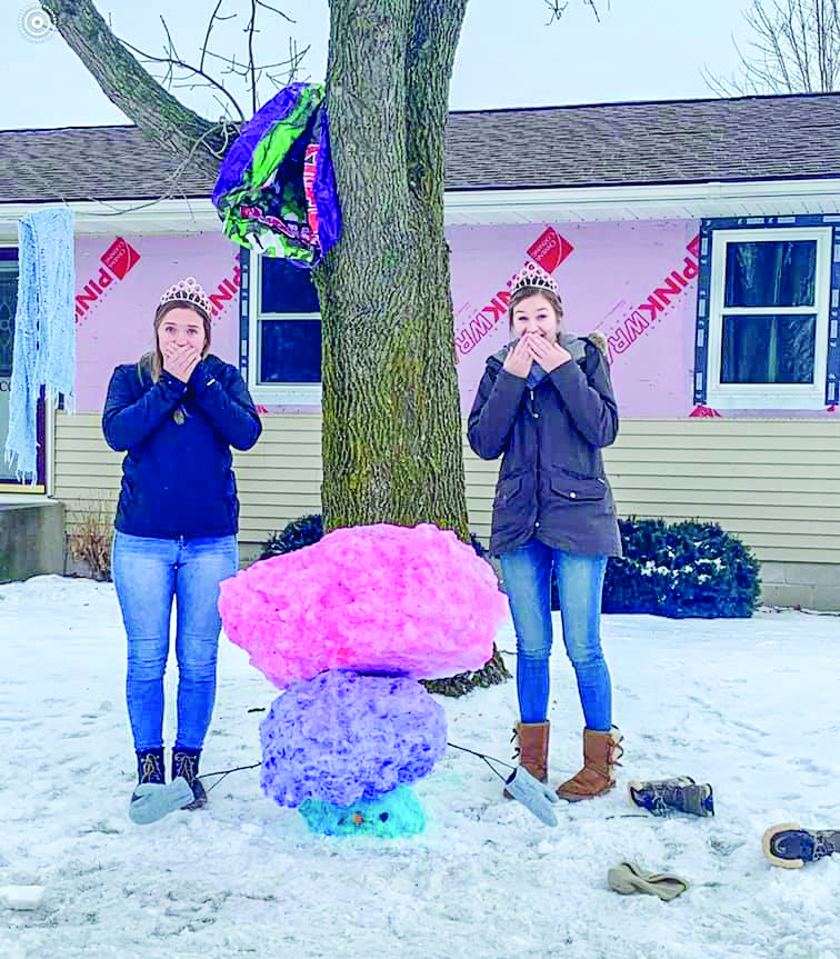 The Snow Sculpture Contest had some great entries this year.  Gibbon Royalty Rylee Sabo and Baleigh Peterson are pictured with the various creations. This sculpture was the third place winner.